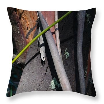 Throw Pillow featuring the photograph Natural Bands 3 by Evelyn Tambour