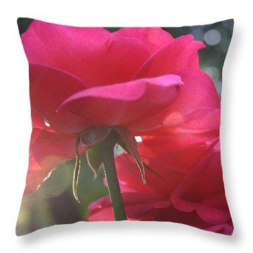 Natural Beauty Ladybird Red Rose Throw Pillow