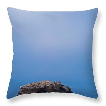 Natural Bridge And Its Reflection Throw Pillow