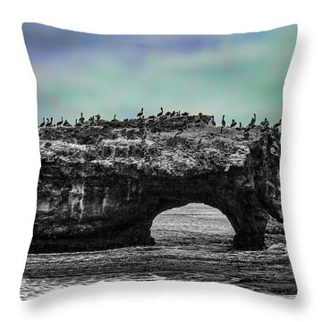 Natural Bridges State Beach Throw Pillow
