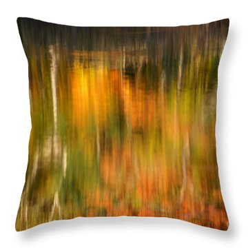 Natural Brushstrokes - New England Autumn Reflections  Throw Pillow