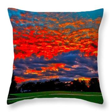 Natural Contrast Throw Pillow
