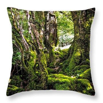 Natural Emeralds. I Wicklow. Ireland Throw Pillow by Jenny Rainbow