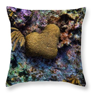 Natural Heart Throw Pillow by Peggy Hughes