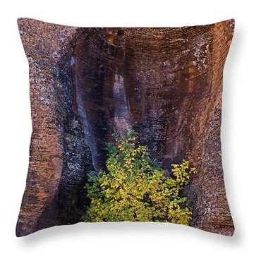 Natural Niche For Teenager Tree Throw Pillow