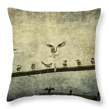 Natural Order Throw Pillow by Andrew Paranavitana