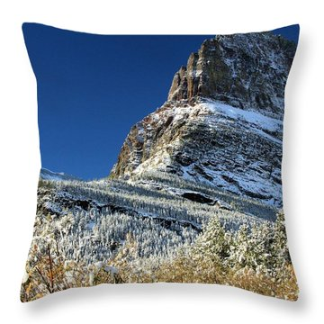 Natural Picture Frame Throw Pillow by Adam Jewell