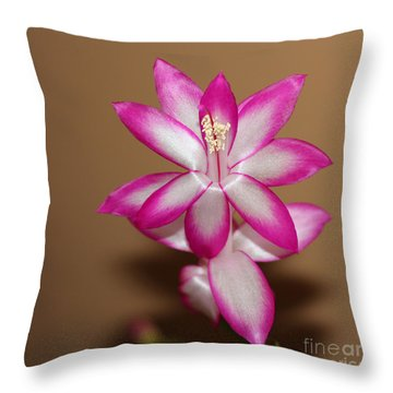 Natural Pink Christmas Cactus Throw Pillow