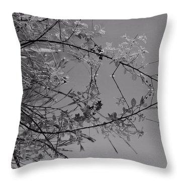 Natural Reflection Throw Pillow by Karol Livote