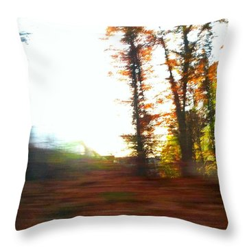 Throw Pillow featuring the photograph Natural by Rose Wang
