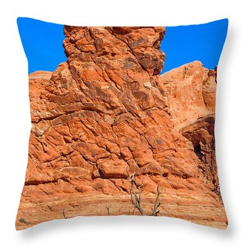 Throw Pillow featuring the photograph Natural Sculpture by John M Bailey