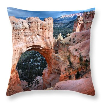 Throw Pillow featuring the photograph Natural Wonders by Barbara Manis