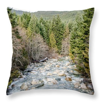 Island Stream Throw Pillow