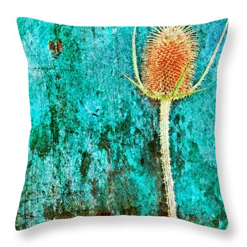 Throw Pillow featuring the digital art Nature Abstract 13 by Maria Huntley