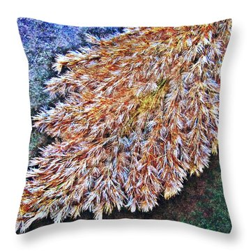 Nature Abstract 53 Throw Pillow by Maria Huntley