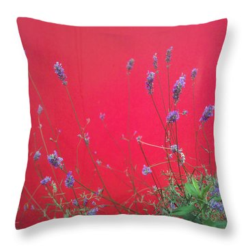 Nature And The City Throw Pillow