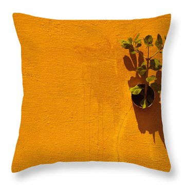 Nature Don't Stop II Limited Edition 1 Of 1 Throw Pillow