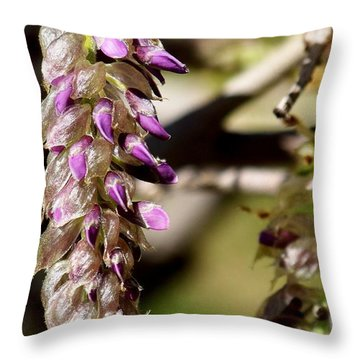 Nature Is Amazing Throw Pillow