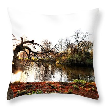 Nature Throw Pillow by Marwan Khoury
