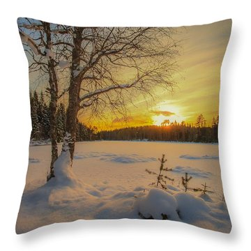 Nature Of Norway Throw Pillow by Rose-Maries Pictures