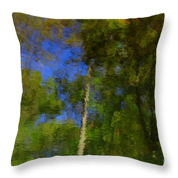Nature Reflecting Throw Pillow by Melissa Petrey