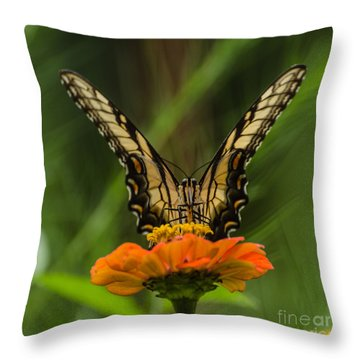 Nature Stain Glass Throw Pillow by Donna Brown