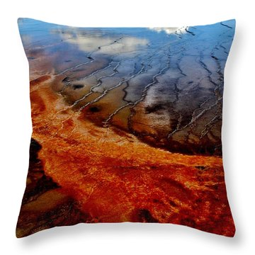 Throw Pillow featuring the photograph Natureprint by Benjamin Yeager