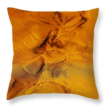 Natures Abstract Throw Pillow by Blair Stuart