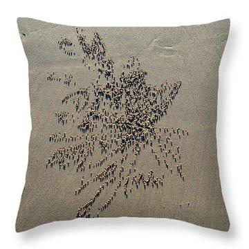 Natures Art - Sand Ball Flower Throw Pillow