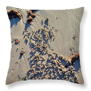 Natures Art - Spot The Sand Bubbler Crab Throw Pillow