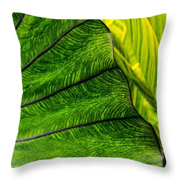 Nature's Artistry Throw Pillow by Jordan Blackstone
