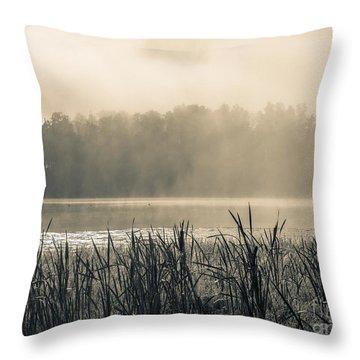 Nature's Beauties - Spiderwebs Birds And Mist Throw Pillow