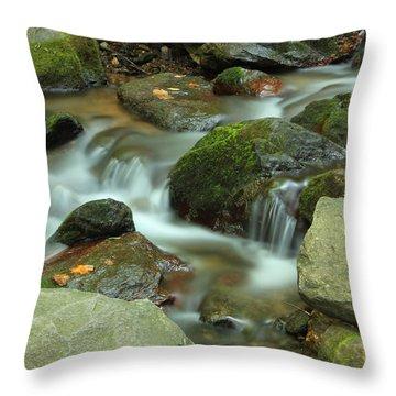 Nature's Beauty Throw Pillow