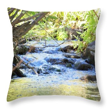 Nature's Beauty Throw Pillow by Sheri Keith