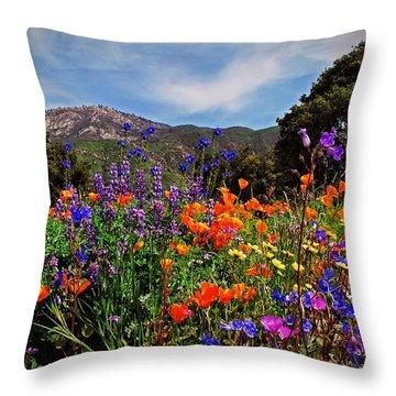 Nature's Bouquet  Throw Pillow