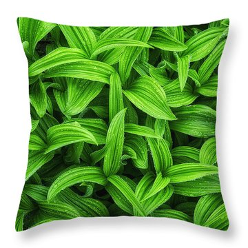 Natures Chaos Throw Pillow by Ryan Manuel