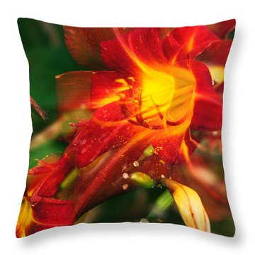 Natures Color Fury Throw Pillow