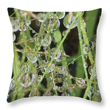 Natures Diamonds Throw Pillow