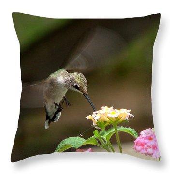 Nature's Dinner Throw Pillow