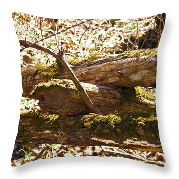 Throw Pillow featuring the photograph Natures Fence by Nick Kirby