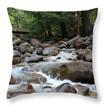 Nature's Flow  Throw Pillow
