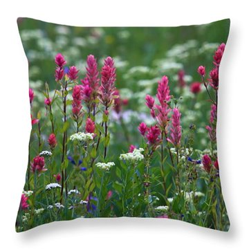 Nature's Front Row Throw Pillow by Marty Fancy