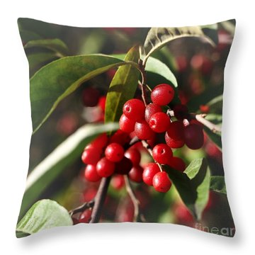 Natures Gift Of Red Berries Throw Pillow