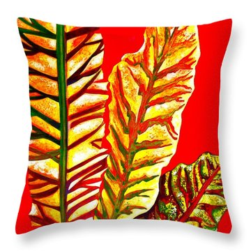 Nature's Gifts Throw Pillow