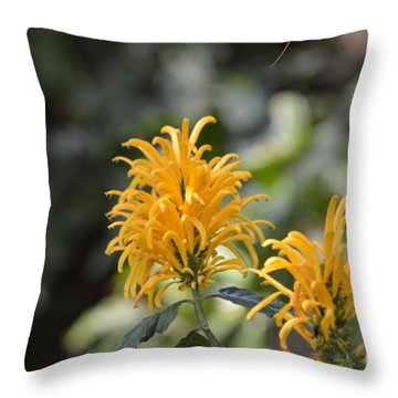 Nature's Golden Fireworks Throw Pillow