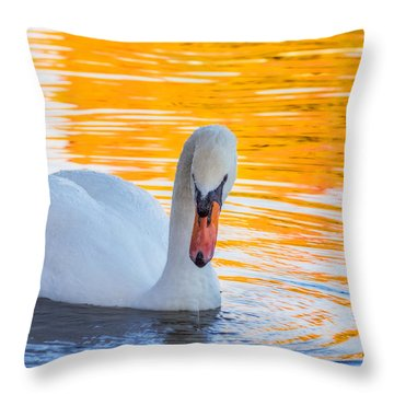 Nature's Grace Throw Pillow