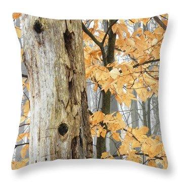 Natures Harmony Throw Pillow