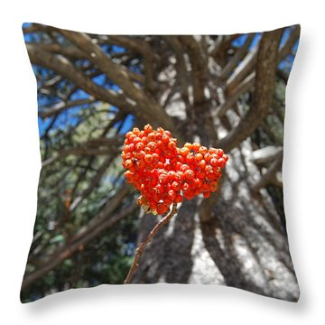 Nature's Heart Throw Pillow by Debra Thompson