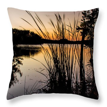 Natures Hidden Beauty Throw Pillow by Rene Triay Photography