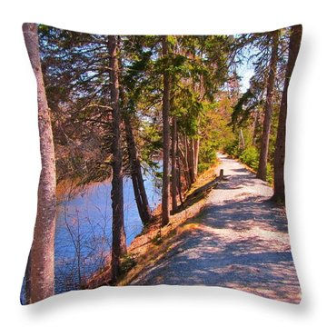 Natures Highway Throw Pillow by John Malone